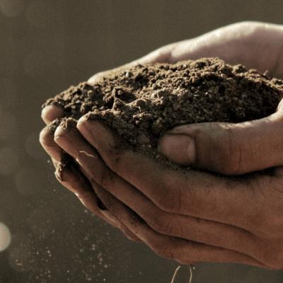 Groen beleggen is investeren in een betere wereld